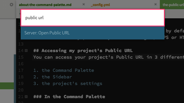 Public URL in the Command Palette